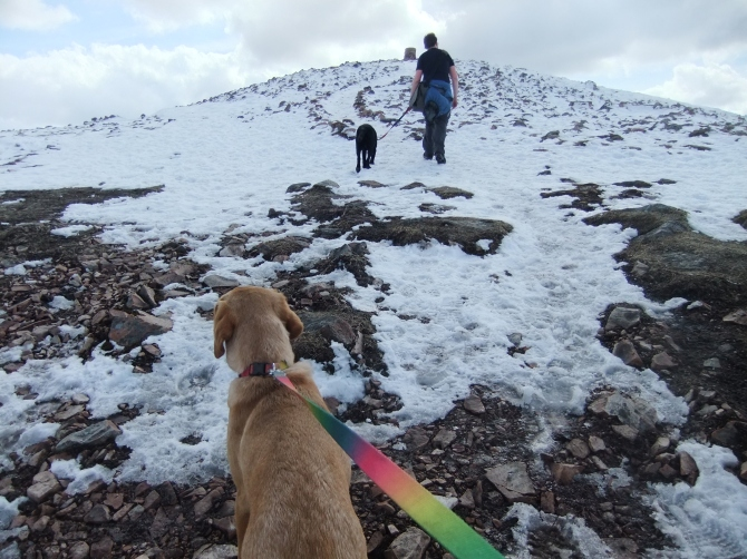 ...of the big cairn on the top of Tinto (hill) near Lanark.  :oops: