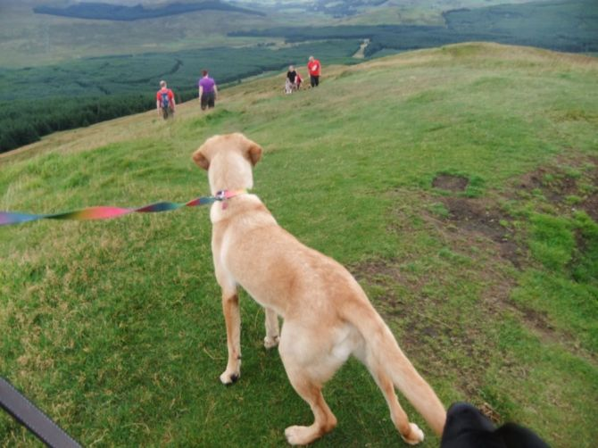 Lottie watches the first of Hell's Hounds crest the rise